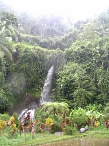 indonesia-136
